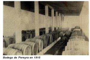 bodega Pereyra.jpg