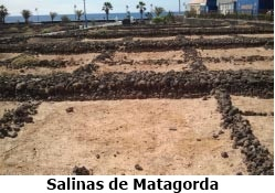 Salinas Matagorda